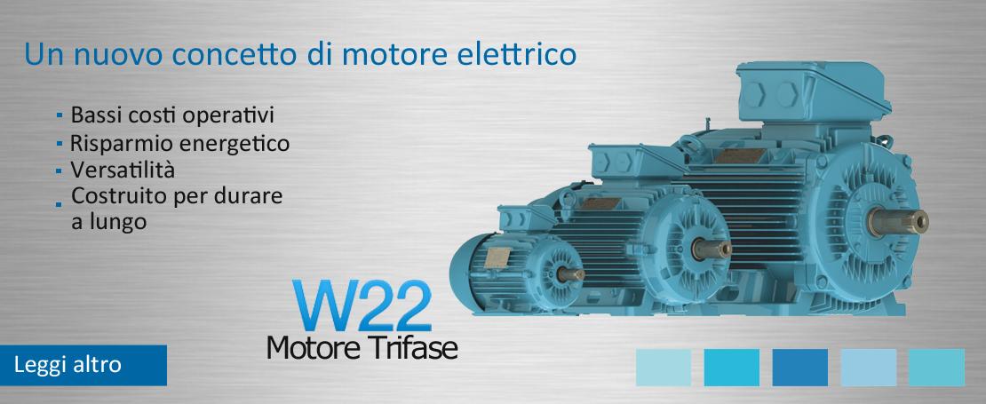 Motore W22